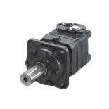 Hydraulic motor OMS type (TF EPMS)
