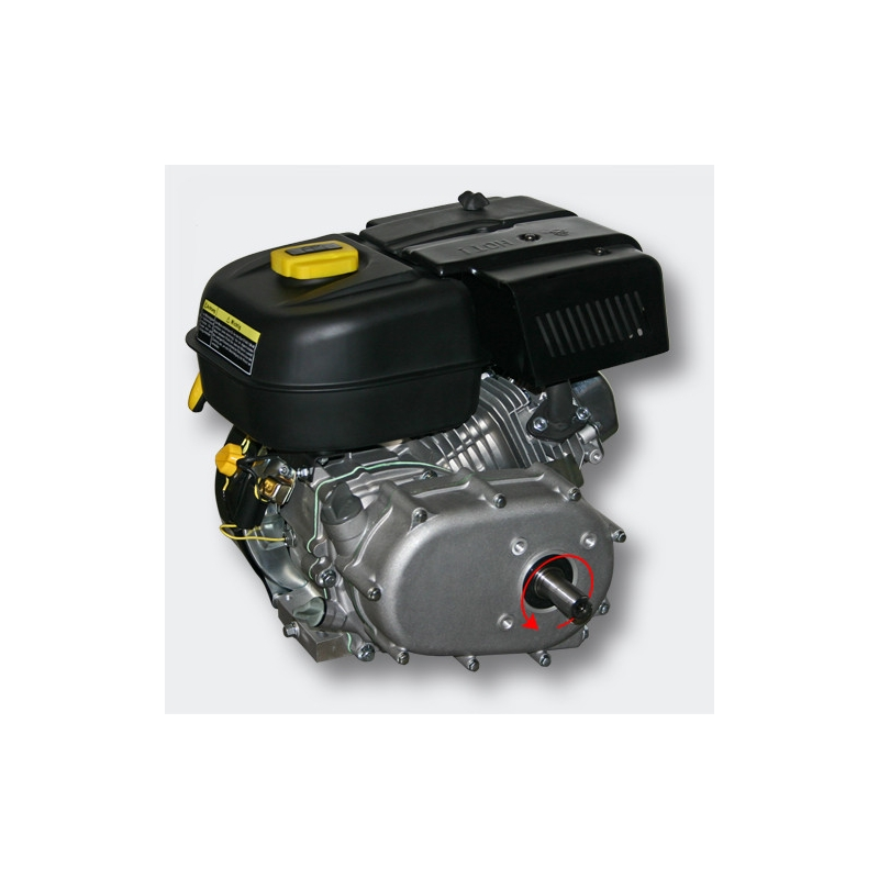 Petrol engine 4.8 kW (6.5Hp) with gearbox 2:1