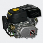 Petrol engine 4.8 kW (6.5Hp)with gearbox 2:1, e-start